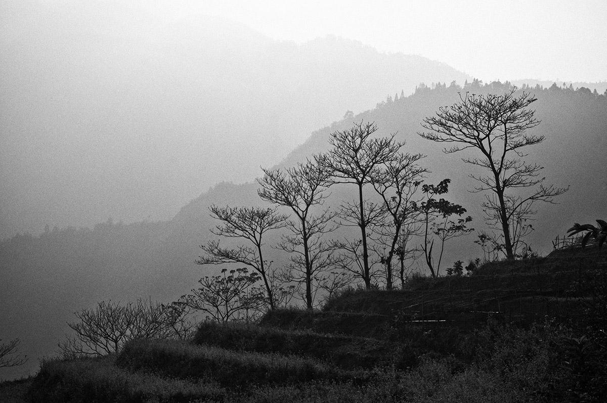 Heuvels van Sapa