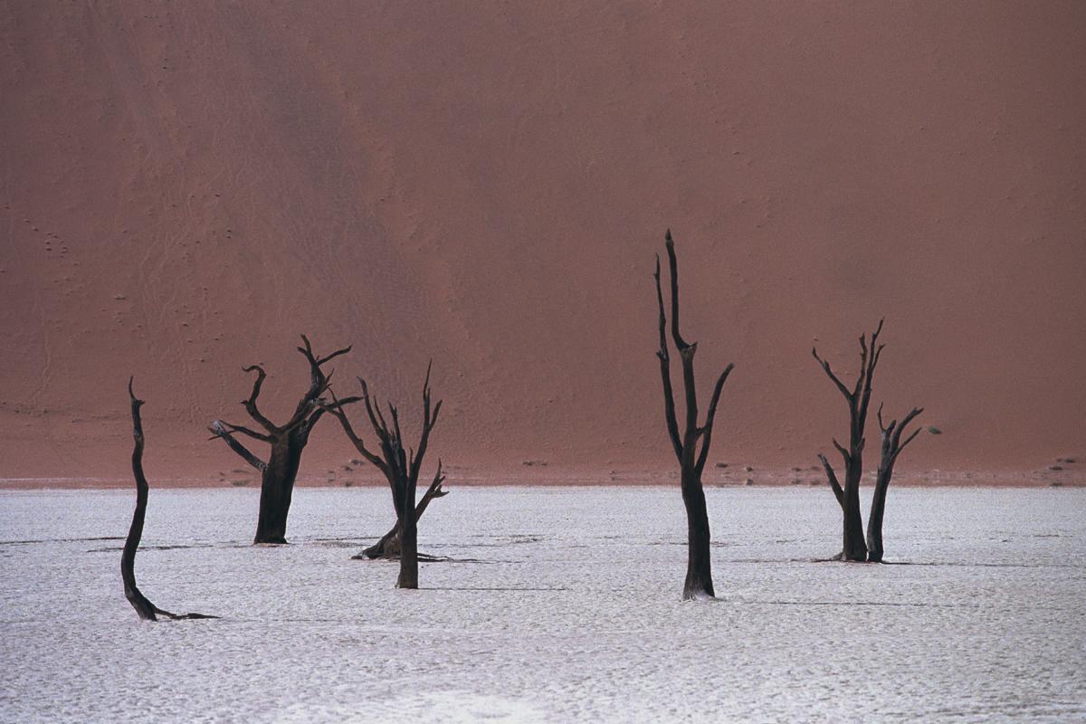 Namibie in beeld
