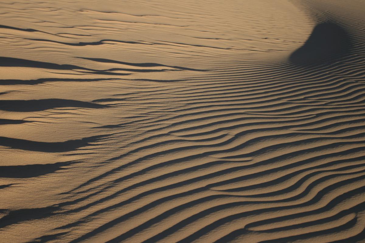 Details van een zandduin in de woestijn in Algerije