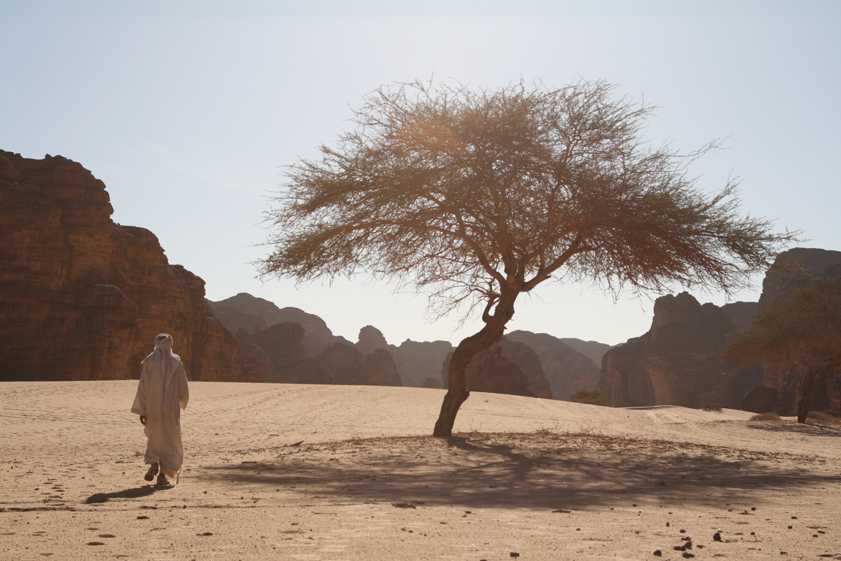 Wandelen door de woestijn in Afrika