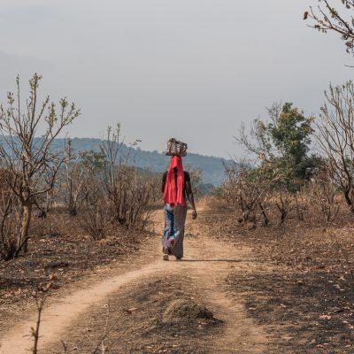 Wandelen door Guinee