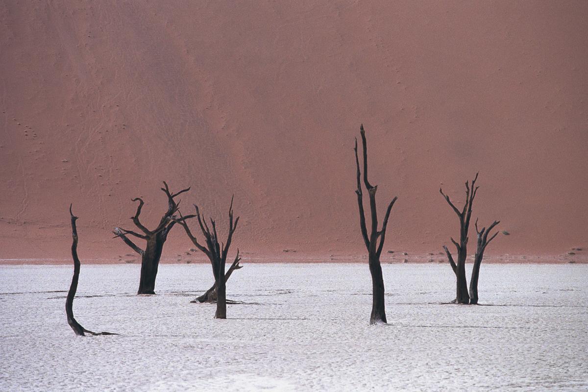 Dodevlei in Namibië